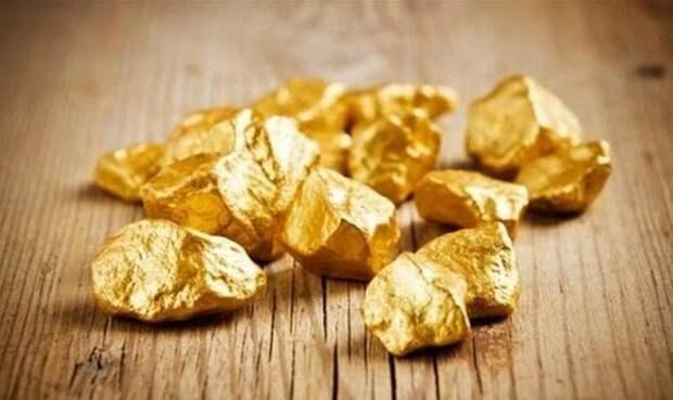 Золотая лихорадка Земли