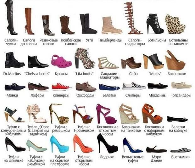 Виды женской обуви Фабрика идей, Шпаргалки, помощь, про все на свете