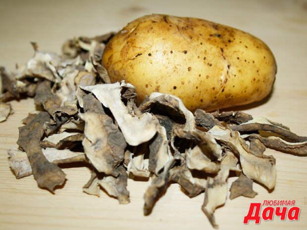 Картофельные очистки для хорошего урожая смородины