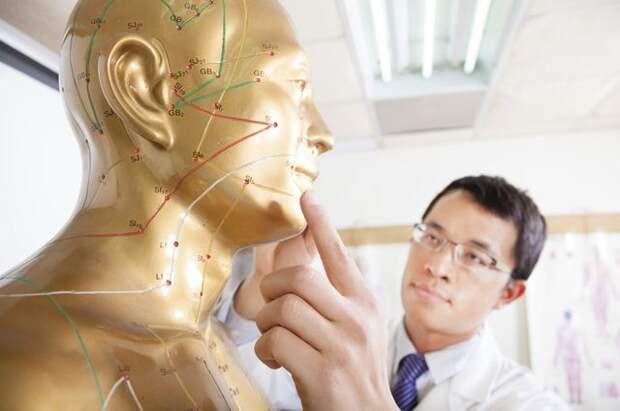 6 «китов» китайской медицины. Чем лечат на Востоке?