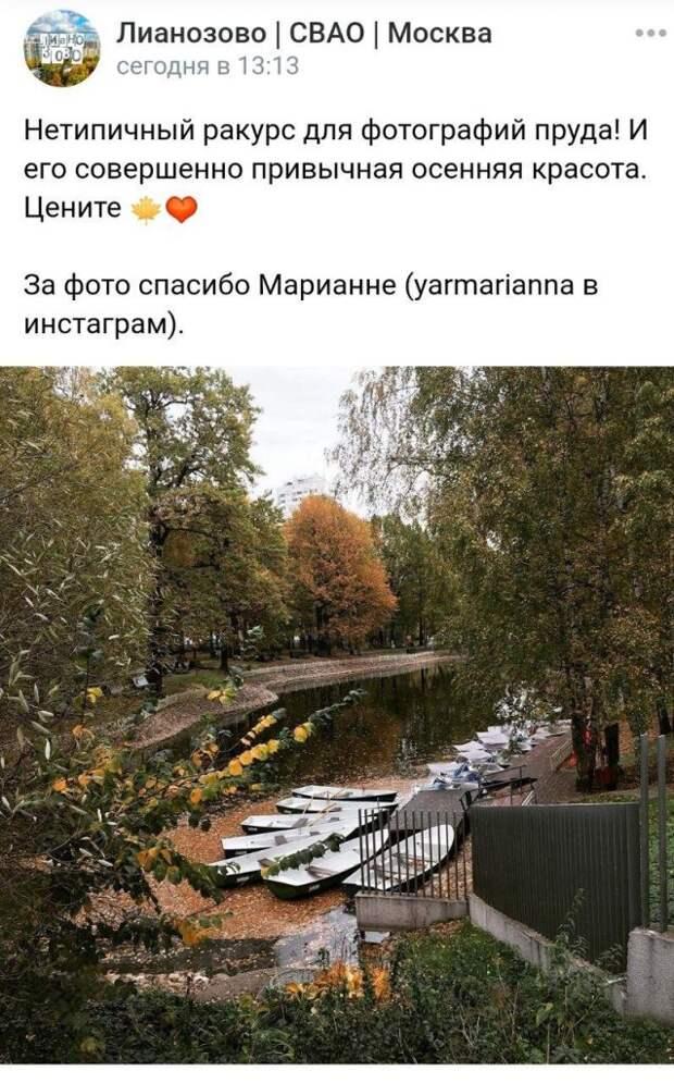 Фотокадр: осенняя меланхолия в Лианозовском парке