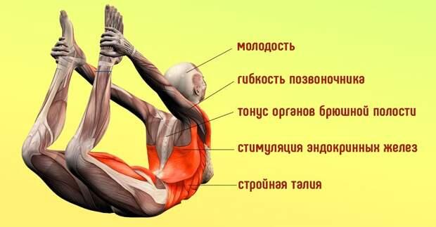 бодифлекс для похудения спины