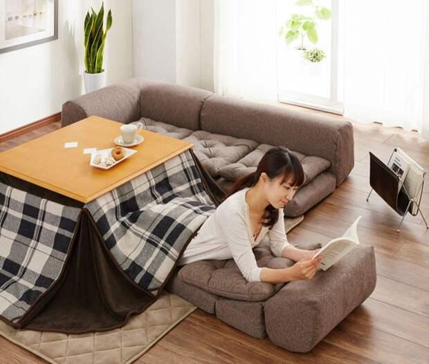 В Японии нет центрального отопления, и вот как они спасаются зимой