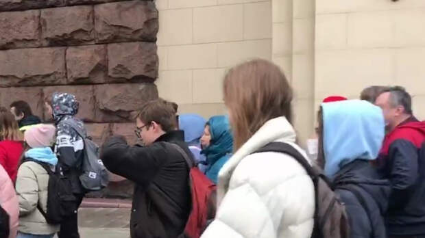 Журналист Рябцева сравнила незаконные митинги в стране с приступом истерики
