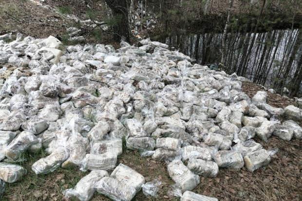 Свалку хлеба нашли в Нижегородской области