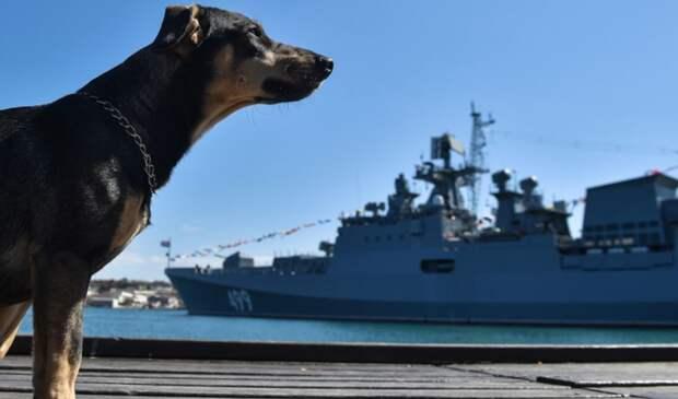 Болгары признали Крым русским. Последствия испытали тут же