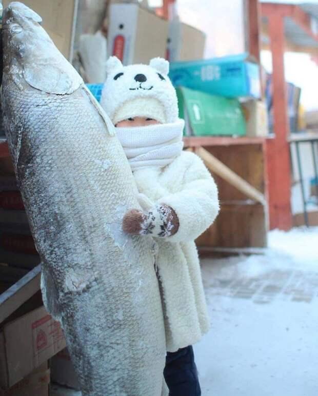 Это Якутия, детка! Ещё 11 сочных снимков о суровой сибирской зиме