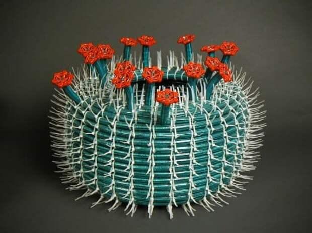 Цветущий кактус на дачу