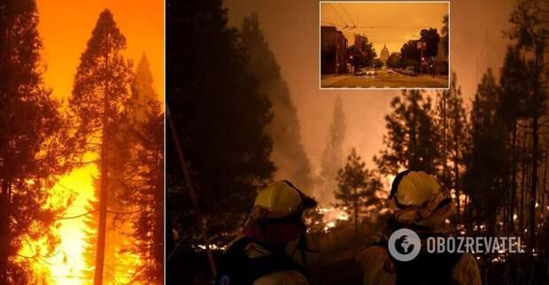 Лесные пожары в США: в огне 12 штатов, более 20 погибших