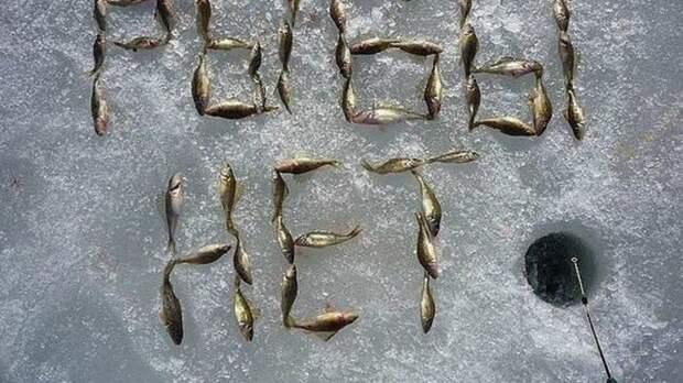 Мелкими рыбешками рыбаки показывают другим, что рыбы здесь нет / Фото: pinterest.es