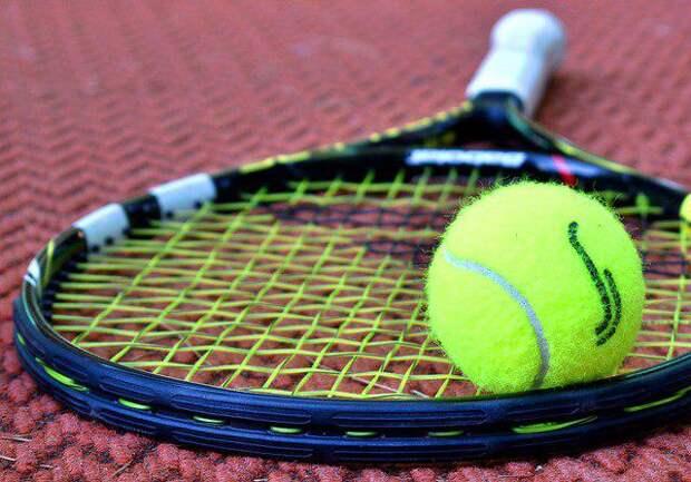 Теннис/Фото: pixabay.com