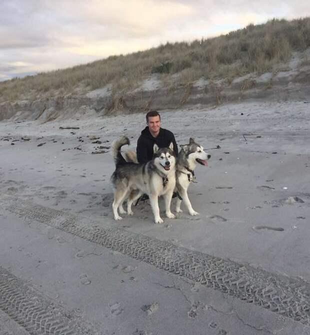 мужчина с двумя собаками