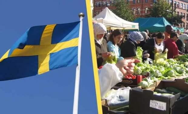 Швеция - нация, совершающая самоубийство