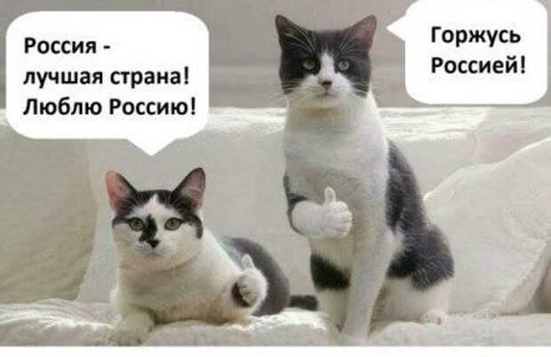 По данным РосКотСтата
