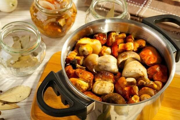Старинные рецепты засолки грибов