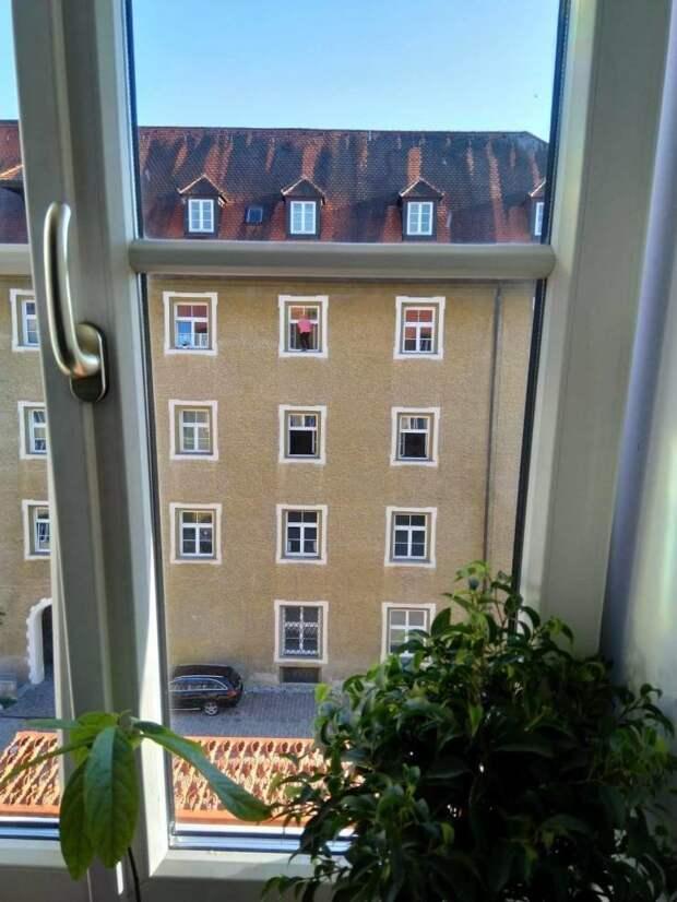 Мытье окна на 4 этаже день, животные, кадр, люди, мир, снимок, фото, фотоподборка