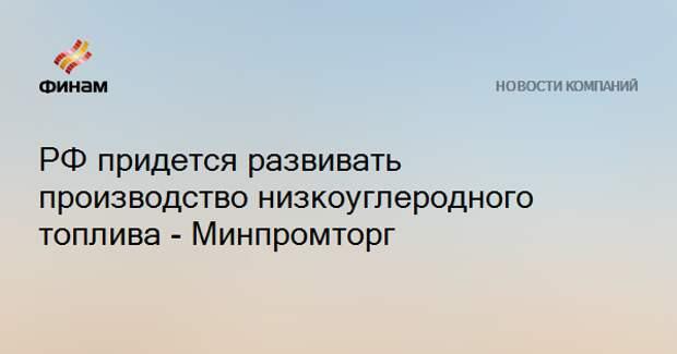РФ придется развивать производство низкоуглеродного топлива - Минпромторг