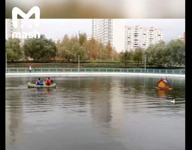 Житель Марьина спас раненую чайку