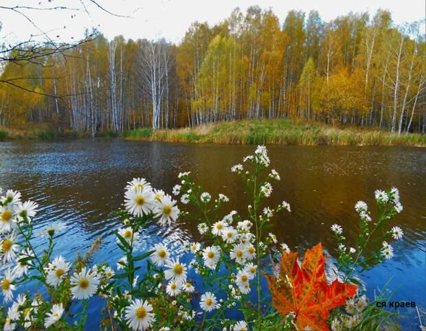 Красоты России (#576)