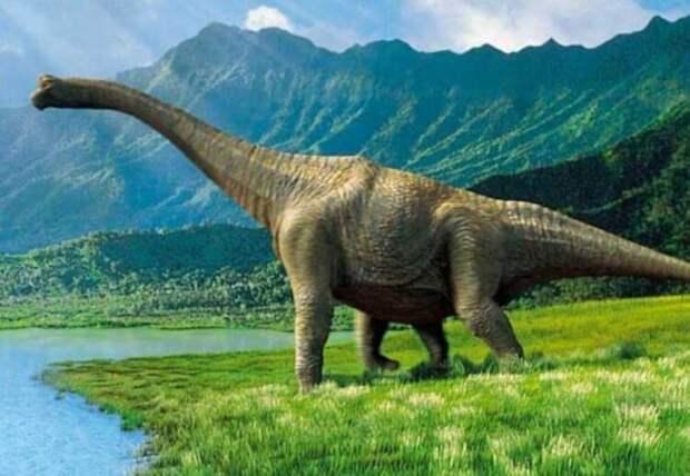Найдены останки самого крупного животного в истории Земли
