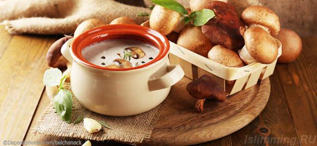 Грибная диета рецепт супа