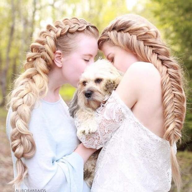 25.  косы, сестры