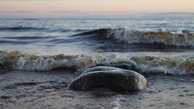 Эстония намеревается заблокировать Финский залив для России