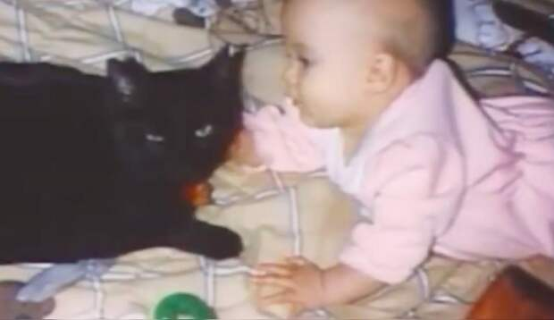 Мать услышала крик кошки из спальни, где спала 1,5-месячная дочка. Кошка спасла крохе жизнь!