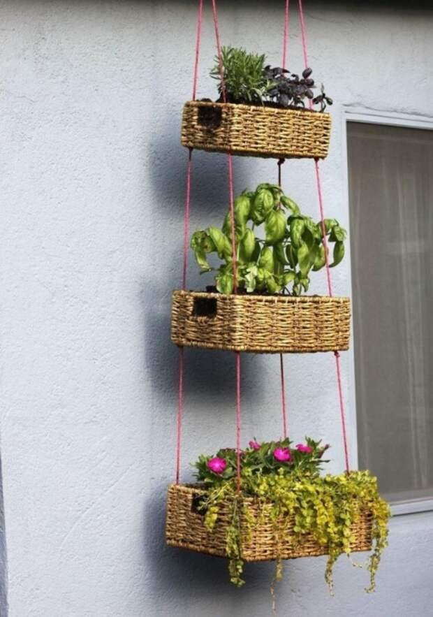 Реальная идея, которая поможет озеленить и преобразить маленький балкон на дачном участке.