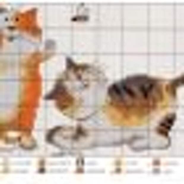 СТЕЖОК, ЕЩЁ СТЕЖОК. Схемы забавных котов для вышивки крестом