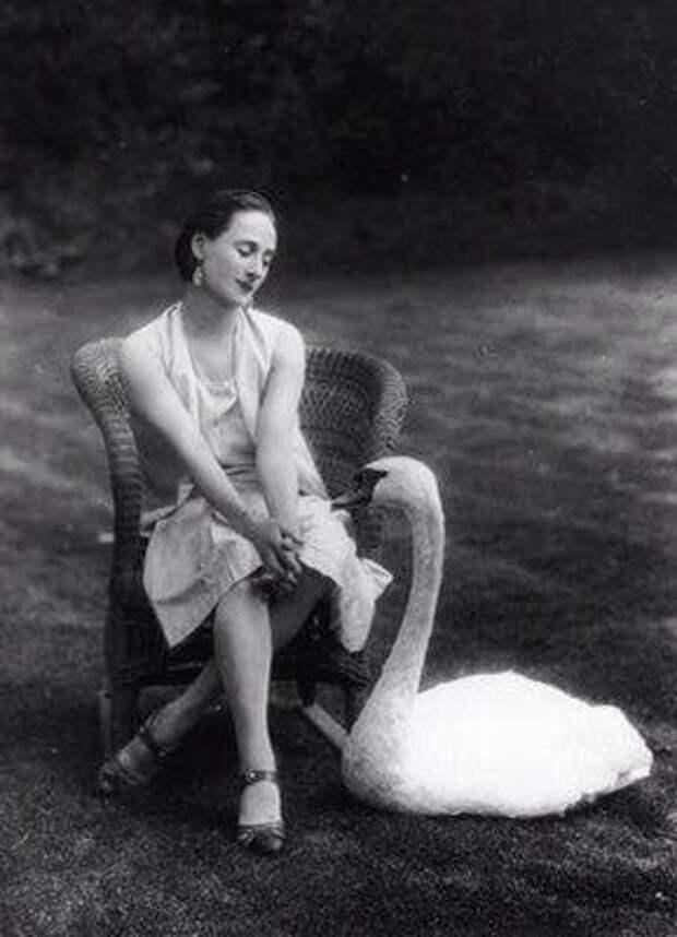 Одна из величайших балерин XX века Анна Павлова с любимым питомцем, лебедем Джеком.