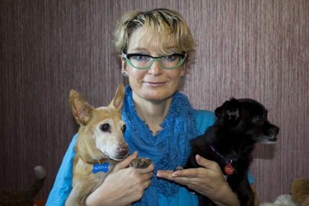 Пенсионерам из ЮВАО предлагают спокойных собачек из приюта