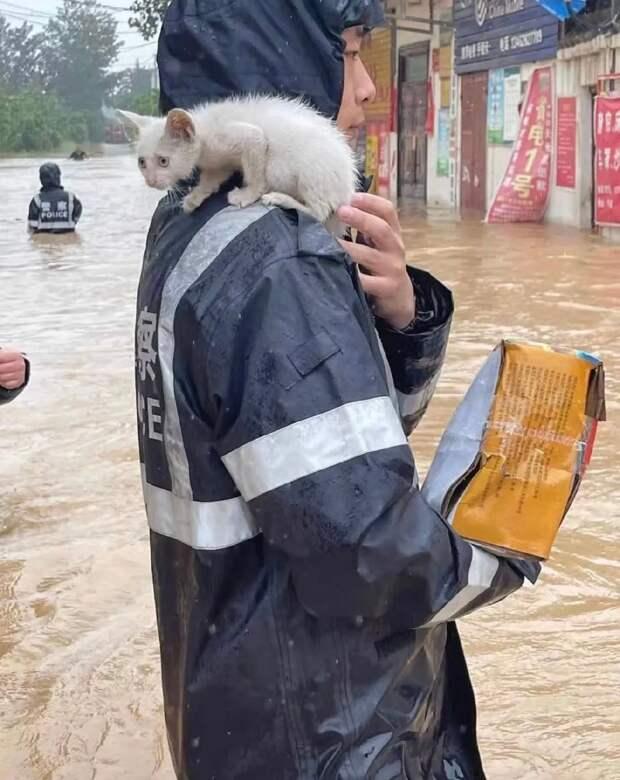 Страшное наводнение в центре Китая: 33 человека погибло