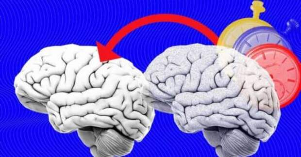 Почему плохая память – это хорошо?