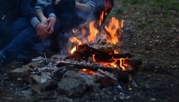 В лесах Подольска запретили разводить огонь из‑за особого противопожарного режима