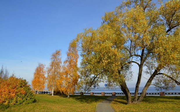 В Центральную Россию придёт «золотая осень»