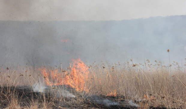 Предупреждение овысокой пожарной опасности продлено вСвердловской области
