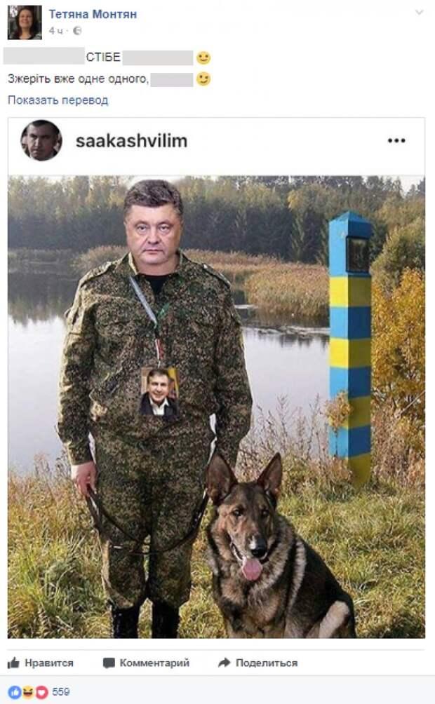 Монтян резко высказалась о «войне» внутри Киева: Сожрите уже один другого