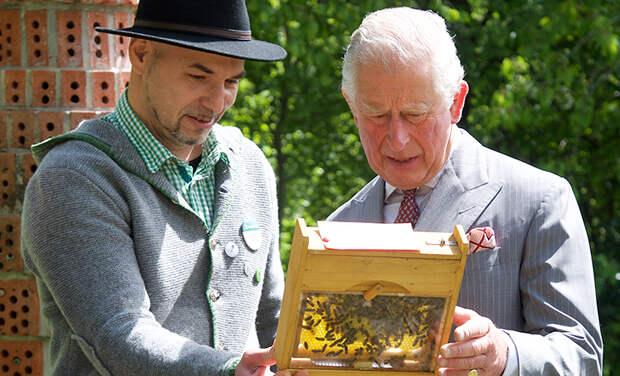 Принц Чарльз продает мед по королевской цене