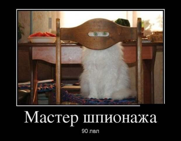 Демотиваторы Мастер шпионажа 90лвл