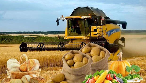 «Урожайные рубли» вручат лучшим аграриям области в честь профессионального праздника