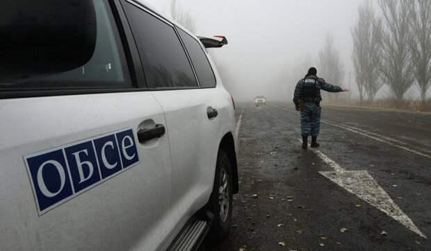 Эксперт: Украина решила отомстить ОБСЕ после разоблачающего отчета ООН о ВСУ