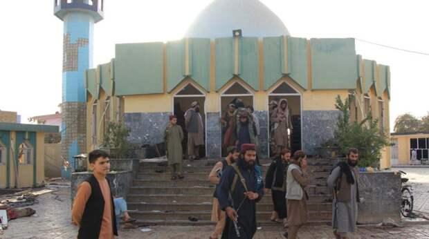 Действия талибов* в Афганистане являются тревожным знаком для России - эксперт
