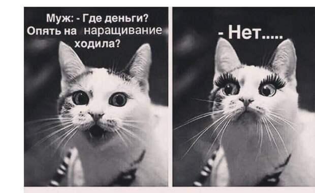 — Ой, доктор, вы знаете, я стал слишать на левое ухо сильно слабее...