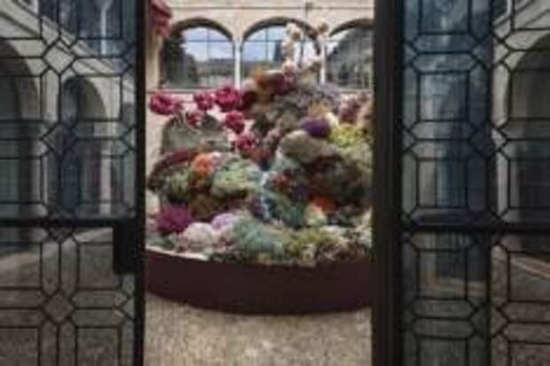 Фестиваль цветов в октябре наполнит Кордову яркими красками и ароматами