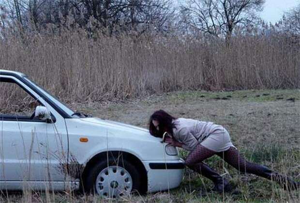За рулем сидит звезда, значит это не езда автомир, женщины, жизнь, за рулем, не смешно, смешное, юмор