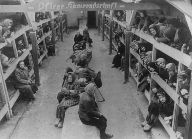 Светлый ангел из Освенцима: Трагический подвиг Гизелы Перл, спасшей тысячи пленных женщин