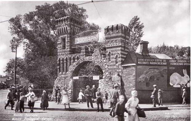 По улицам слона водили: удивительная история Московского зоопарка