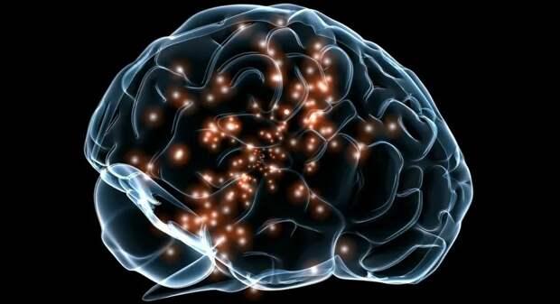 Как дефицит железа влияет на формирование интеллекта