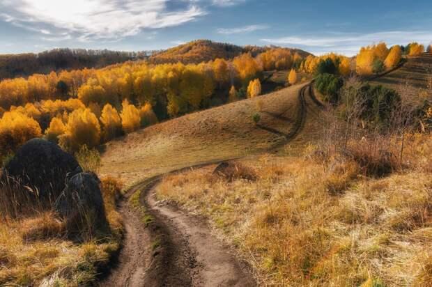 20 лучших кадров октября от National Geographic